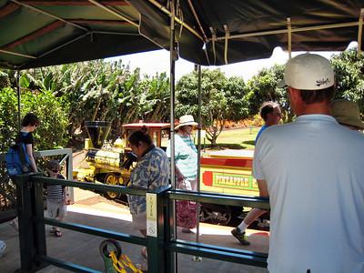 03 Dole Pineapple Plantation