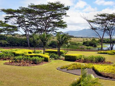 21 Dole Pineapple Plantation