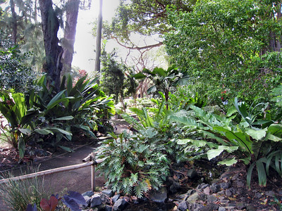 Honolulu Zoo April 14, 2009