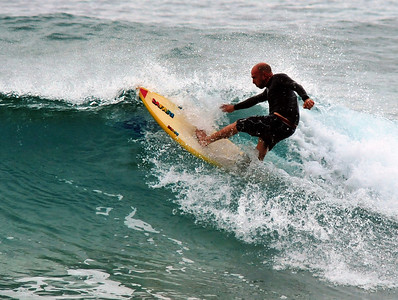 Surf's Up  (C) 2009 Brian Neal
