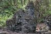 Nature's Lava Tree Sculpture