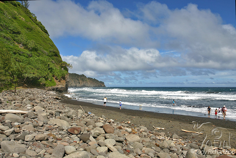 Beach off Pololu Hike