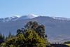 Snow @ Christmas  ~  Mauna Kea 2018