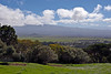 Looking toward Mauna Kea from Parker Ranch land above Waimea