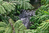 Tranquil falls along Waipio hike