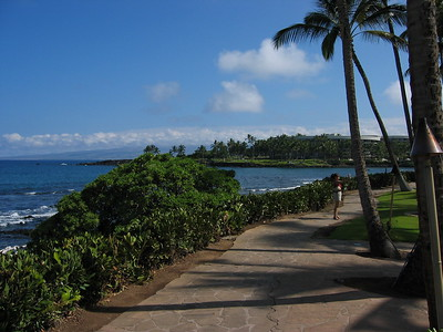 View of the Pacific from Hilton Waikoloa Village, Hawaii