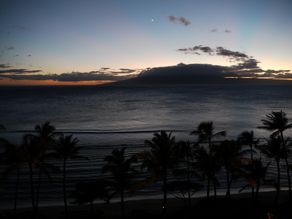 HawaiiFish-1000826