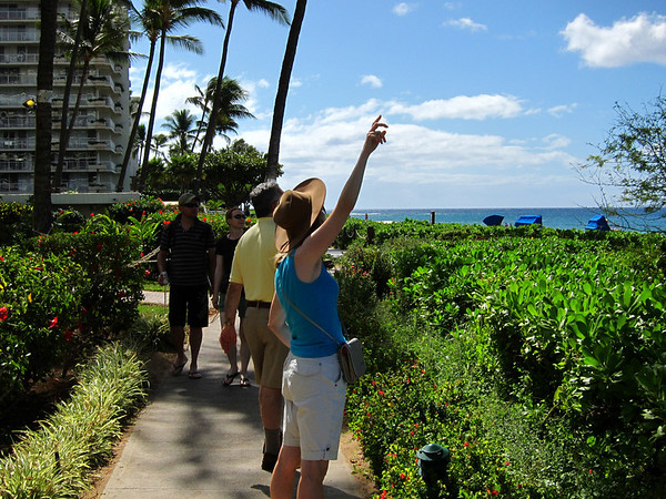 HawaiiFish-0145