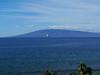 Hawaii-1000130