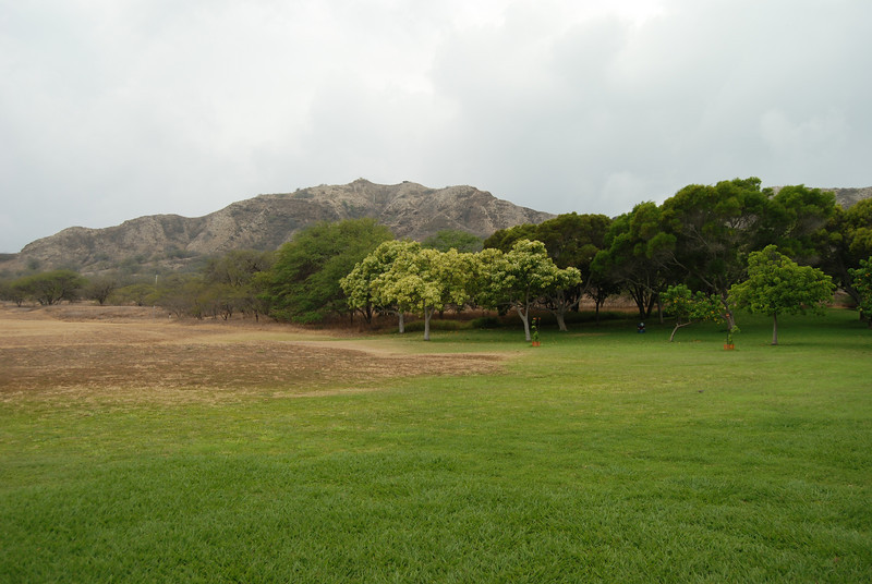 #DIA050310-2 Inside the crater of Diamond Head