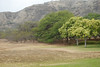 #DIA050310-8 Crater Rim of Diamond Head
