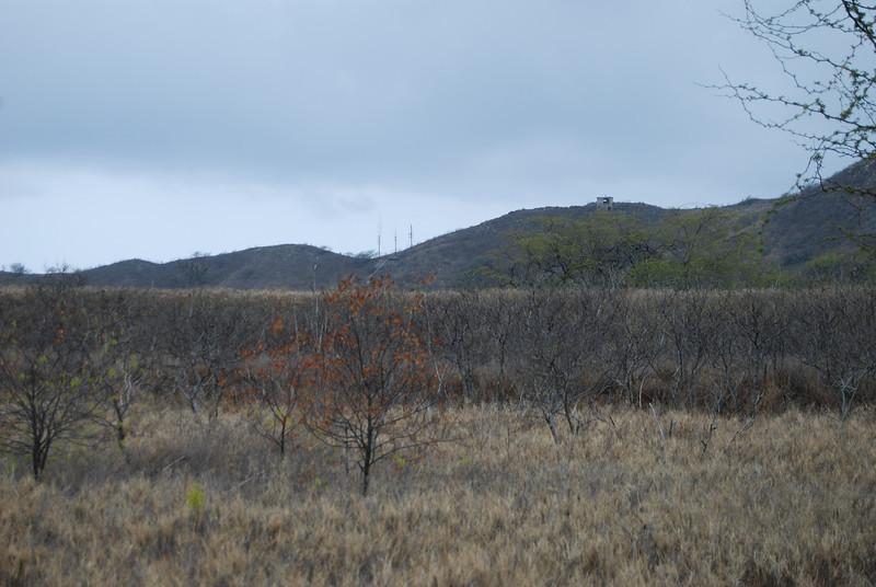 #DIA050310-13 Crater Rim of Diamond Head
