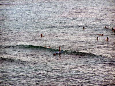 010  Surfing Waikiki