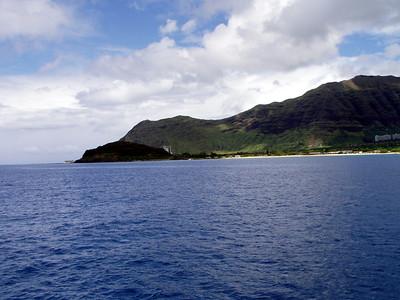 209   Wild Dolphin Watching Cruise