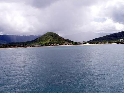 206   Wild Dolphin Watching Cruise