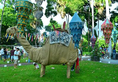 Camel FosterGard 071611 555