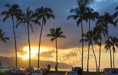 Palm Trees Sunset N  Shore 012212 JPG137