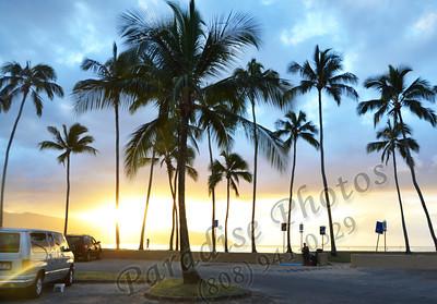 palm trees & van 012212 115