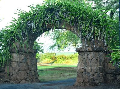 Haliewa Church arch 072311278