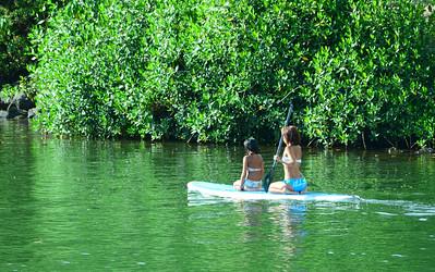 Paddlers in Haleiwa River 072311 005