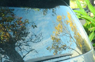 SUV rear window 072311 246