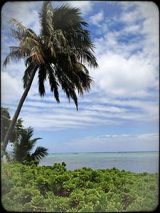 Hmmm, Oahu's nice