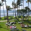 Hawaii-1010334
