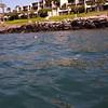 Hawaii-1010361