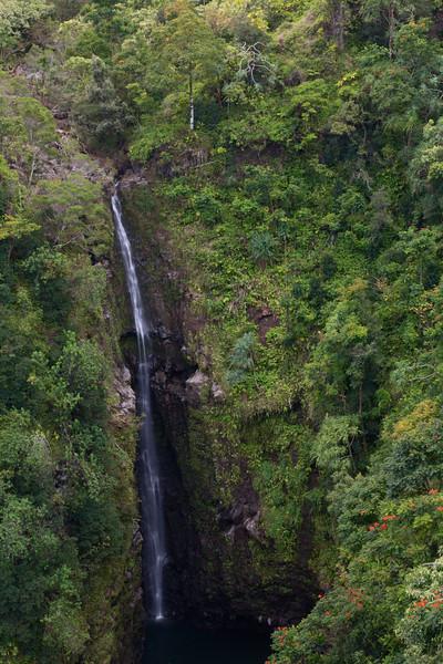 Puohokamoa Falls, Maui