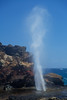 Nakalele Blowhole, Maui, Hawaii