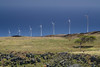 Wind Turbines, Maui, Hawaii
