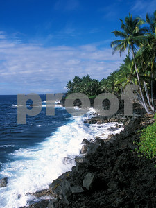View of the rocky shores along the Kalapana coast.