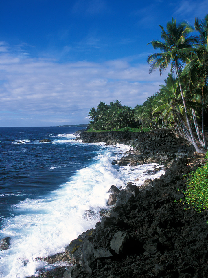 View of the rocky shores along the Kalapana coast.