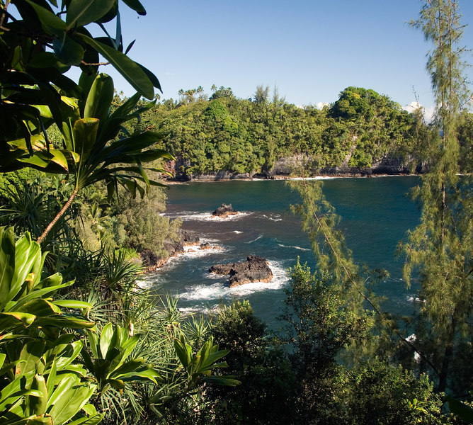 View of Onomea Bay through the jungle north of Hilo.