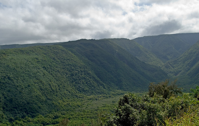 Polulu Valley, Big Island, Hawaii
