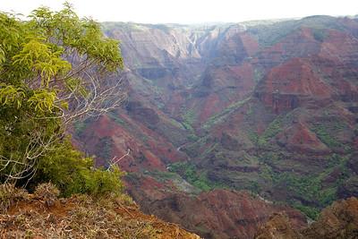 Waimea canyon on the island of Kauai