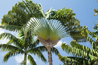 Maui April 23, 2013