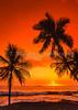 A sunset over Waikiki Beach in Honolulu, Hawaii, Oahu, USA.