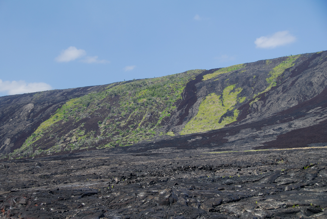 View of the Holei region of Volcanoes National Park from the bottom end of Chain of Craters road.  Patches of scrub and jungle are surrounded by pahoehoe and aa lava flows from different points in time.