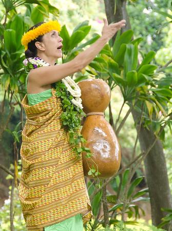 Hula lady gourd arm up1663