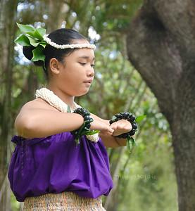 Hula girl purple tree 0712 1818