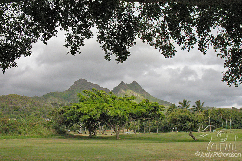 Olomana Golf Course with Mt. Olomana in background