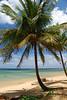 #KAU2010-11 Anini Beach, Kauai