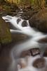 Limahuli Stream, Kauai, Hawaii