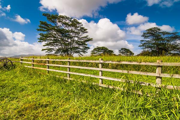 Kaui Farm Fence