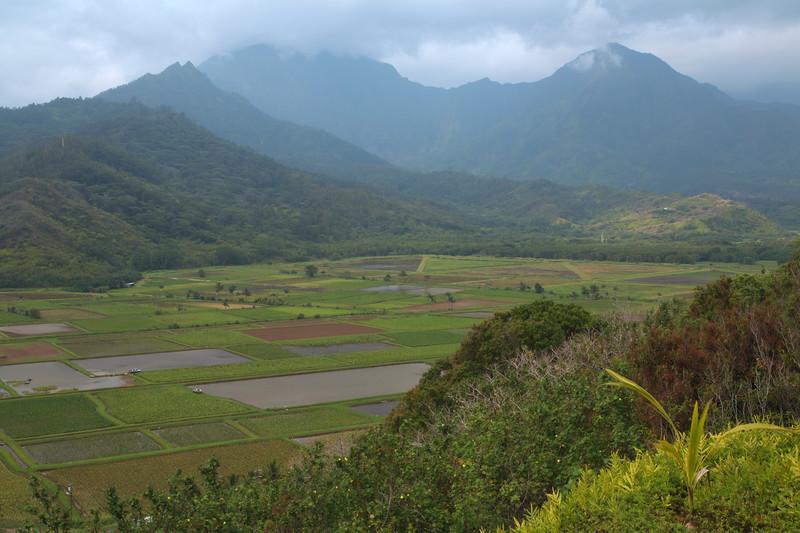 Hanalei Valley Overlook
