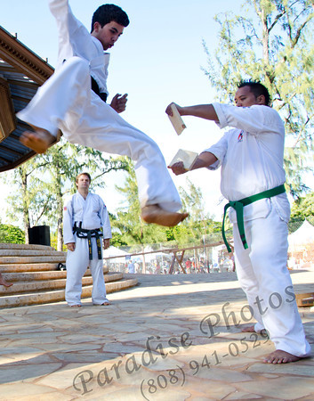 Tae Kwon Do kick in air 9832