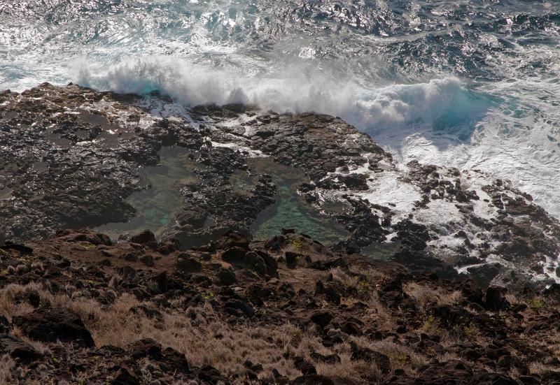 Tidal Pools below Makapu'u Lighthouse walk