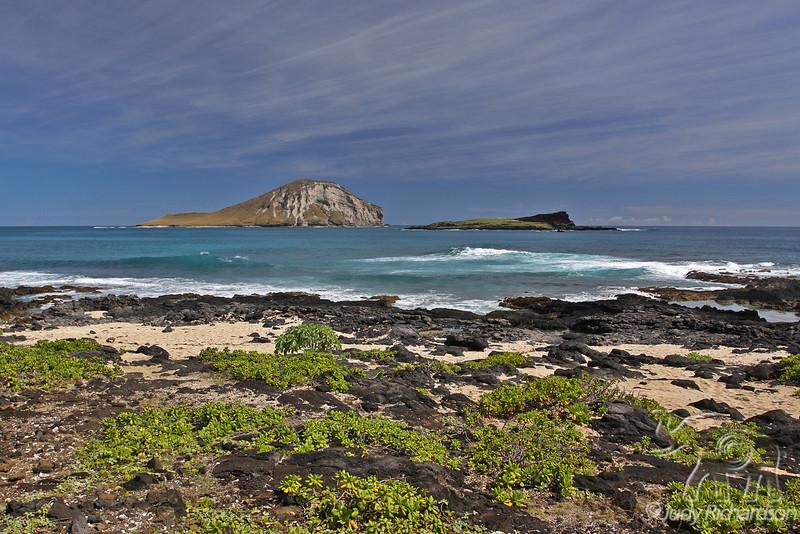Rugged Lava coast with Manana (Rabbit) Island -Oahu