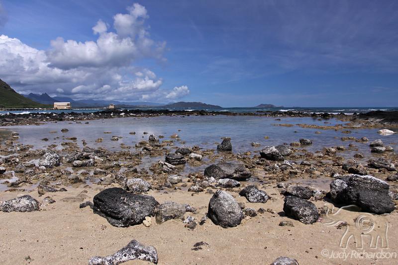 Tidal Pool at low tide looking toward Windward Coast and Makai Pier ~ Oahu